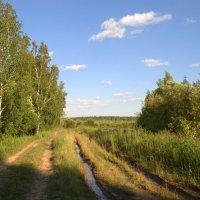 Дорога к озеру :: Оксана Крючкова