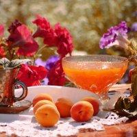 Доброе абрикосовое утро :: galina tihonova