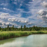 А в летнем небе облака... :: Олег Козлов