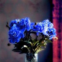 Голубой букет :: Виктор Берёзкин