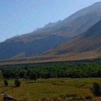 Долина Ойгаинга на высоте 2400м. :: Виктор Осипчук