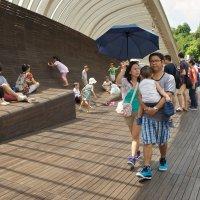 На мосту Henderson Waves, Singapore :: Sofia Rakitskaia