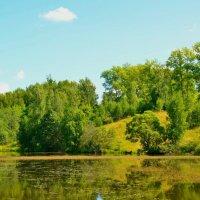 Живописный озерный берег :: Милешкин Владимир Алексеевич