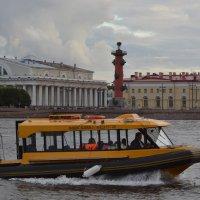 Водное такси :: Наталья Левина