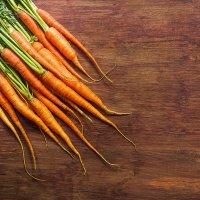 Морковка :: Katie Voskresenskaia
