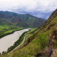 Река Катунь-вид из урочища Че Чкыш :: Наталия Григорьева