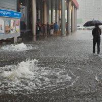 Дождь 17.07.2015 в Петербурге :: Александр Максимов