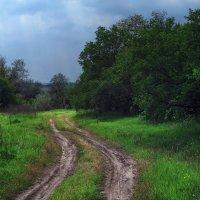 Сельская дорога :: Владимир Боровков