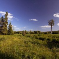 Северный пейзаж_2 :: Александр