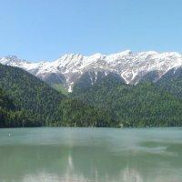 Абхазия. Озеро Рица :: Николай