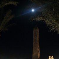 Ночь в Египте :: Тарас Золотько