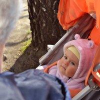 Знакомство с прабабушкой :: Ирина Макарова