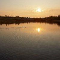 Закат с утками :: Александр Кафтанов