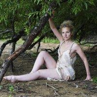 В тени деревьев :: Алексей Соминский
