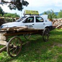 Кто заказывал такси на Дубровку? :: Светлана Игнатьева