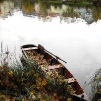 У реки :: Waldemar .