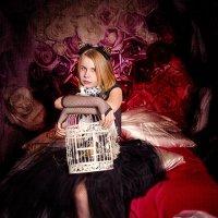 Птичка улетела...кошечка обиделась! :: Ольга Егорова