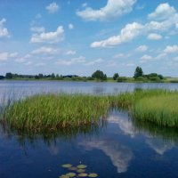 Летняя река :: Victory Kryuchkova