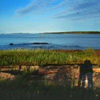 семейный портрет у Белого моря :: Дарья Михальчик