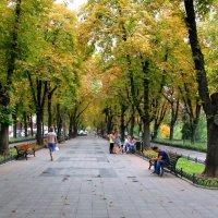 Прогулки по Одессе :: Елена Даньшина