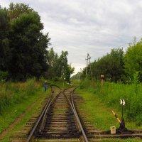 Пути расходятся :: Андрей Лукьянов