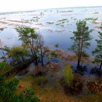 Большая вода :: Александр Прокудин
