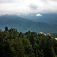 Летом в горах :: Виолетта