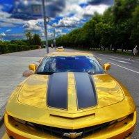 Золотая Антилопа :: M Marikfoto