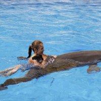 С дельфинами :: Tatyana Garanova