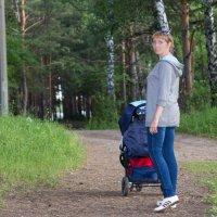 Прогулка в лесу :: Виктор Жигалов