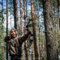 Охотник :: Виктор Баштовой
