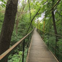 Ботанический сад г. Самары :: Jana Sheremet
