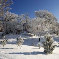 Утро после снегопада. :: Валерий Майоров