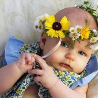 Цветы :: Женечка Зяленая
