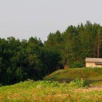 ☼домик в лесу :: Владимир Суязов