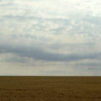 Русское поле 2 :: Игорь
