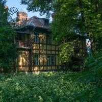 дом с привидениями :: Михаил