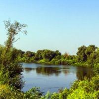 На берегу у реки.. :: Юрий Стародубцев