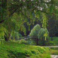 В парке :: Андрей Лукьянов