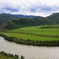 Вдоль реки Катунь :: Наталия Григорьева