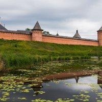 Спасо-Евфимиев монастырь и речка Каменка :: Олег Манаенков