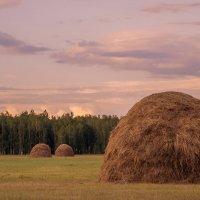 Закат окончил летний тёплый вечер... :: Татьяна Степанова