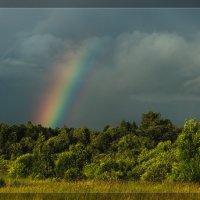 Небесная радуга :: Alexander Royvels