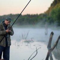 утром на рыбалке.... :: Елена Лабанова