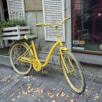 Жёлтый велосипед :: Aнна Зарубина