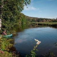 На рыбалке :: Николай Алехин