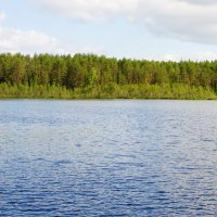 Озеро в Карелии. :: Ирина Нафаня