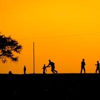 Крикет в Индии :: Максим Музалевский