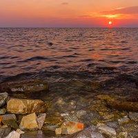 Черное море в разрезе)) :: Елена Васильева