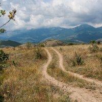 Дорога в горы :: Анатолий Мигов